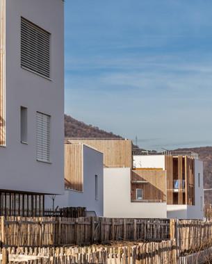 Ce site privilégié au pied du massif du Vercors est une véritable aubaine pour travailler l'intégration du bâti dans le paysage. Le projet propose alors un espace extérieur généreux pour chaque logement et une convivialité renforcée autour des potagers et des espaces de jeux collectifs.  Une nouvelle forme d'habitat qui allie les avantages du collectif et de l'individuel.